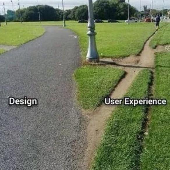 Parkväg och upptrampad stig